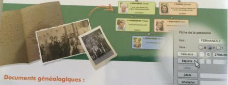 Visuel genealogie